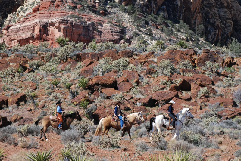 third year anniversary gift